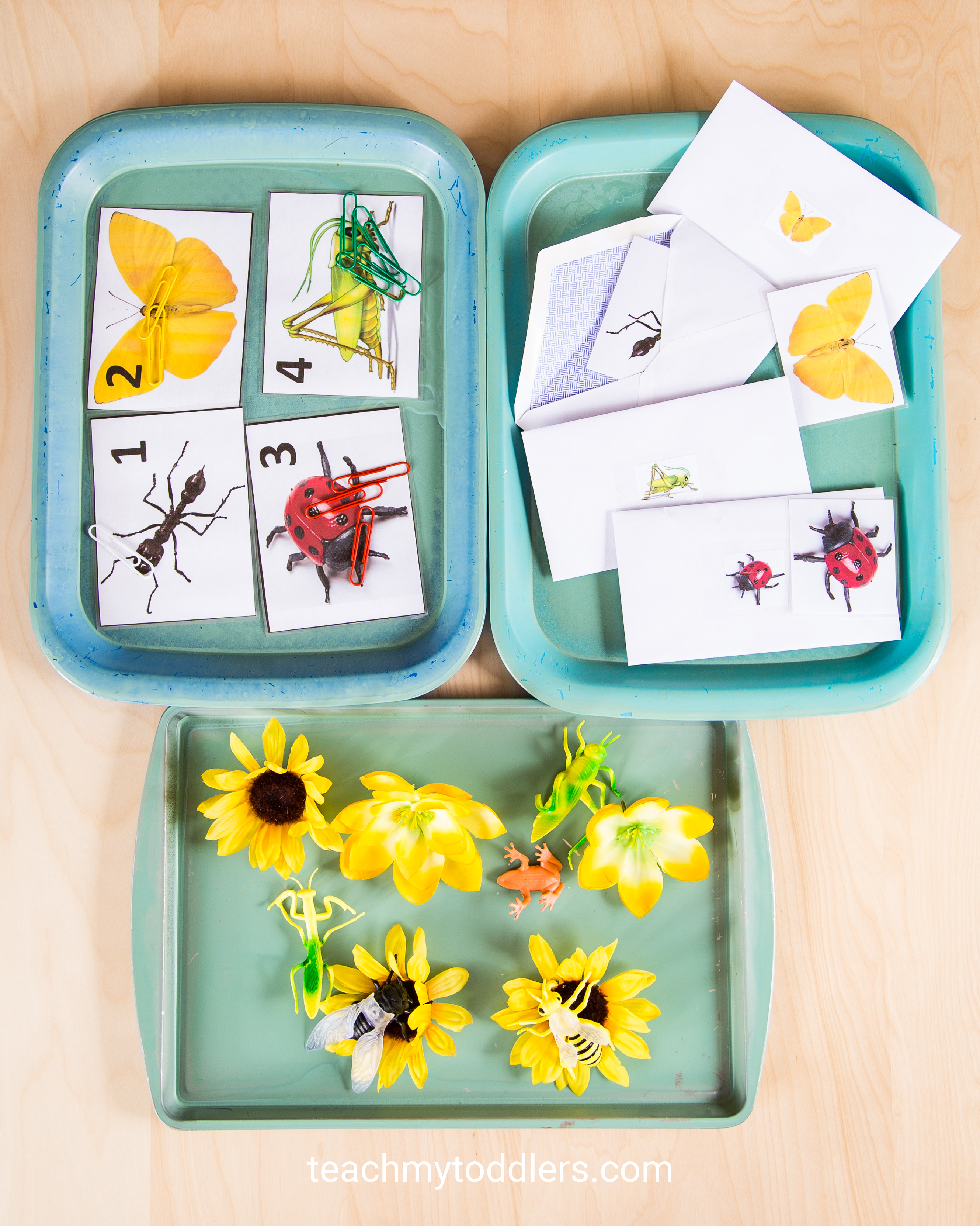 Discover how to use these bug trays to teach your toddlers about bugs