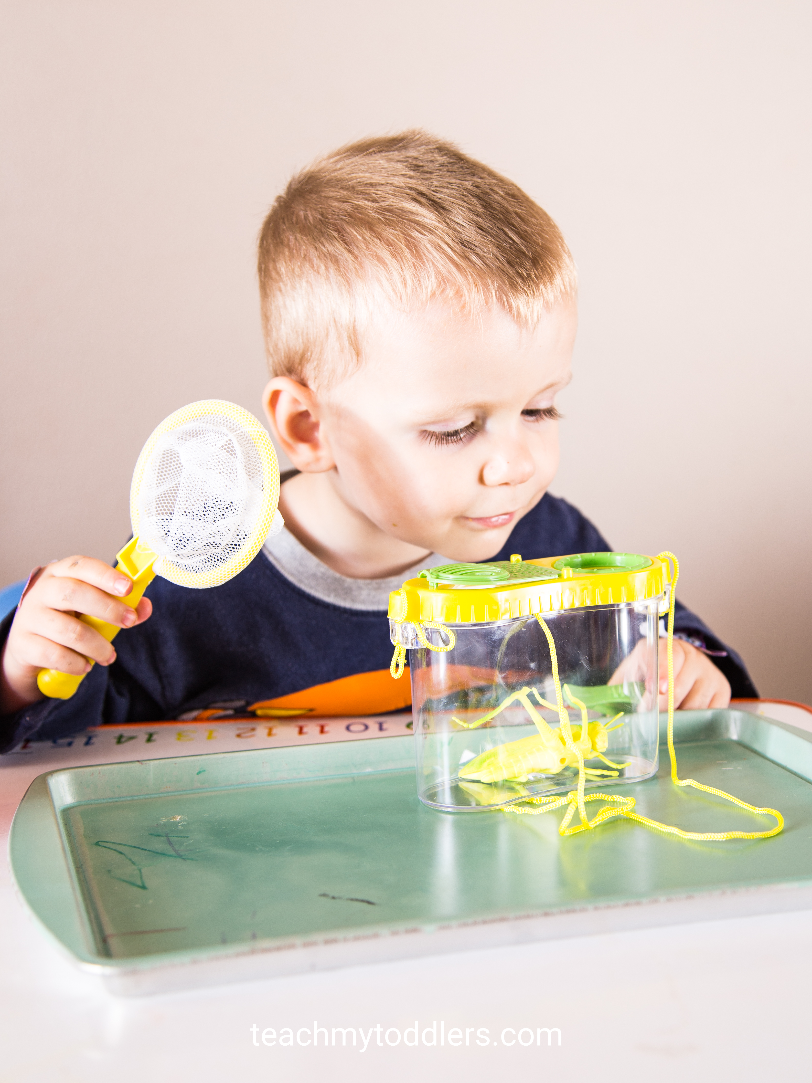 These fun bug trays are perfect for teaching your toddlers about bugs