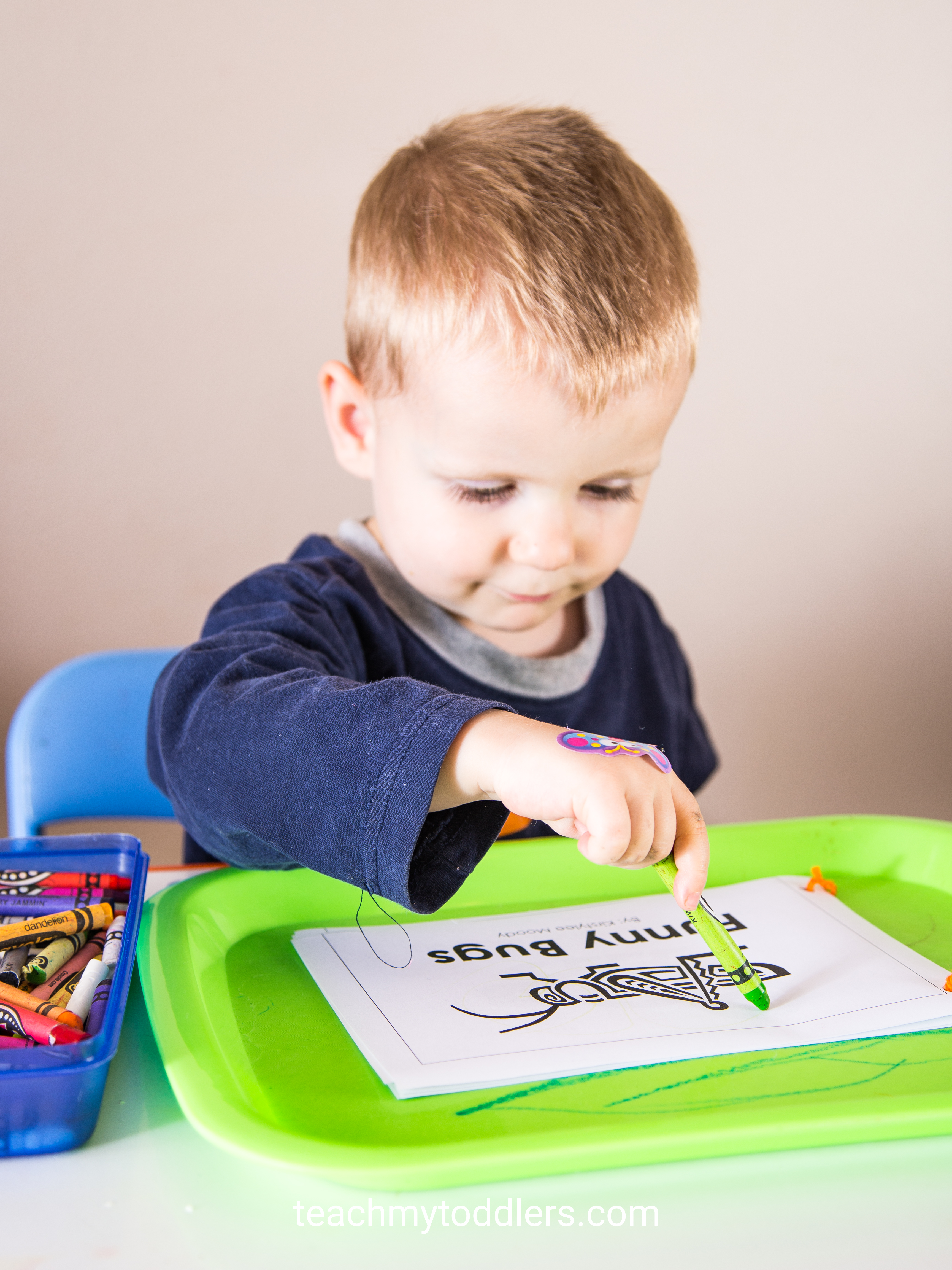 What a great idea in teaching toddlers about bugs using these fun trays