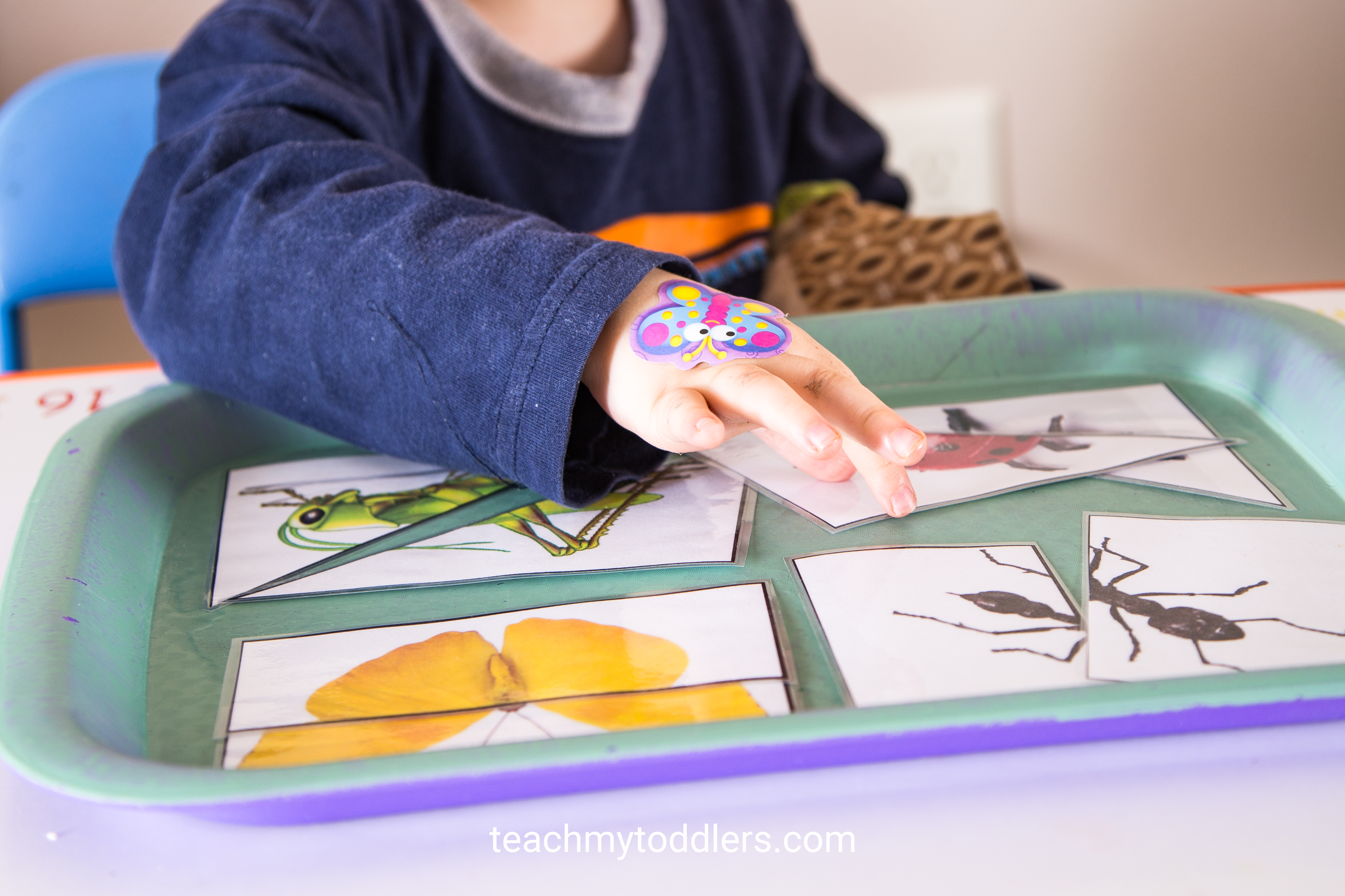 What a great idea in teaching your toddlers about bugs using these awesome trays