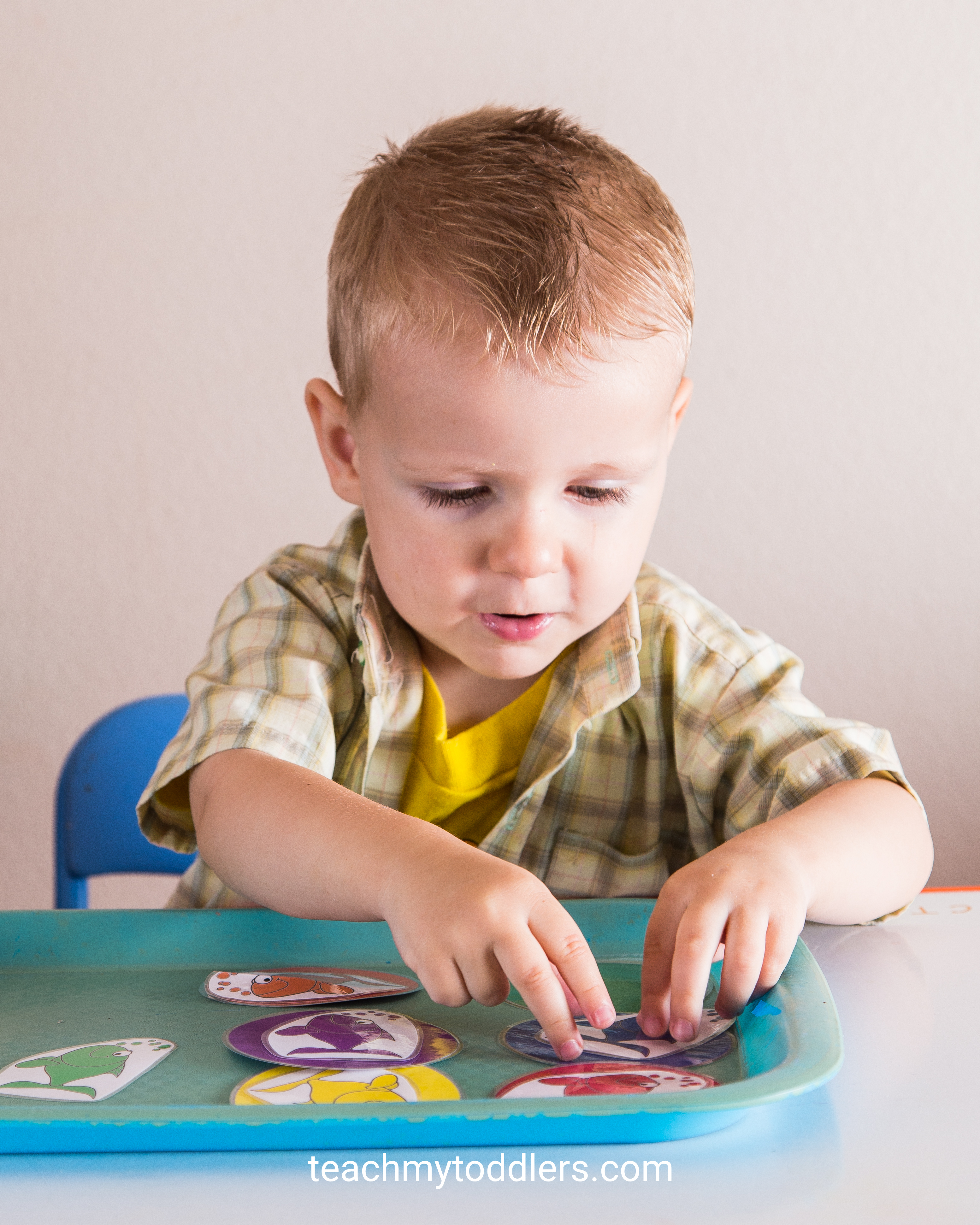 Find out how to teach toddlers the color blue with these tot tray activities