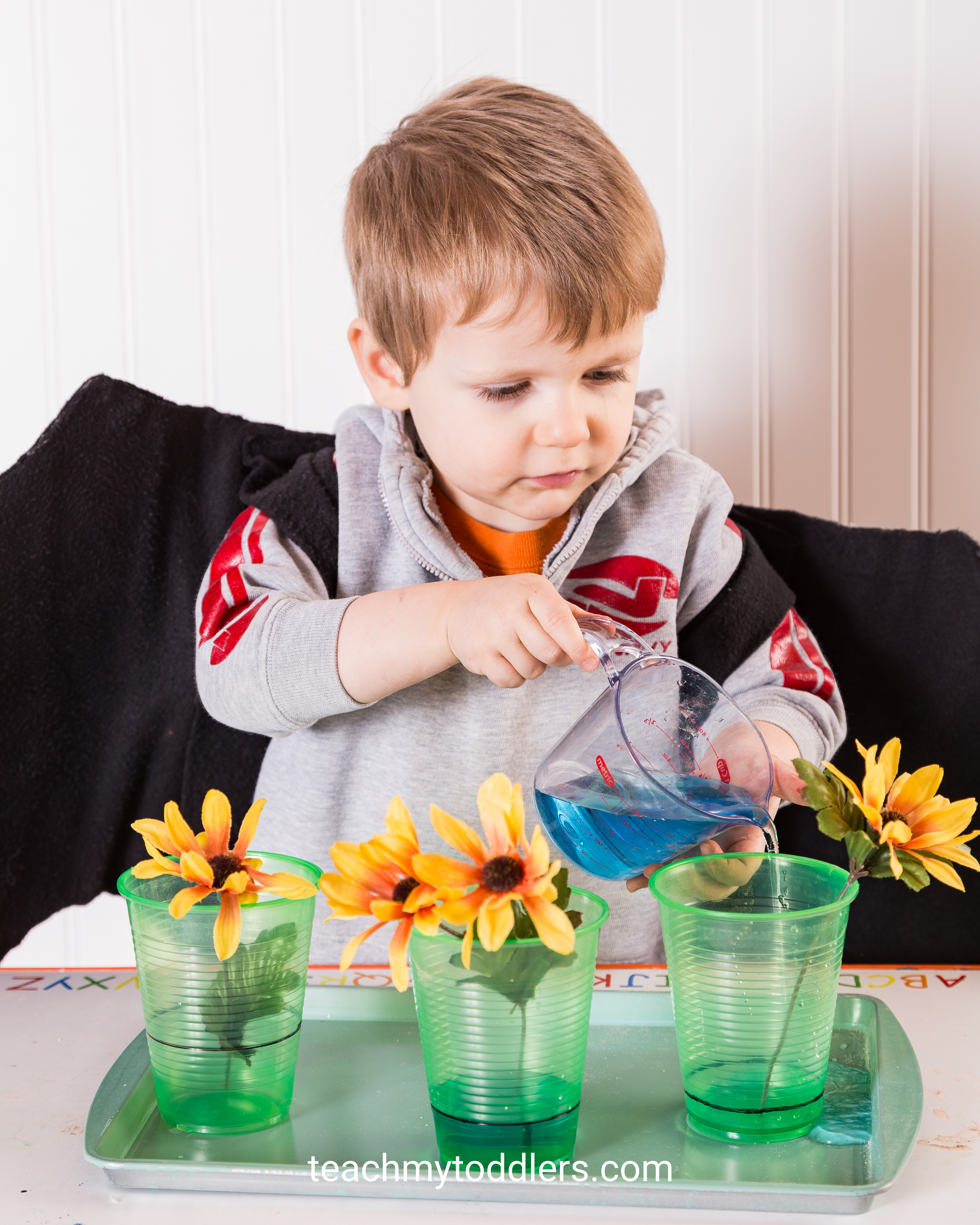 Learn how to use these g is for garden activities to teach toddlers the letter g