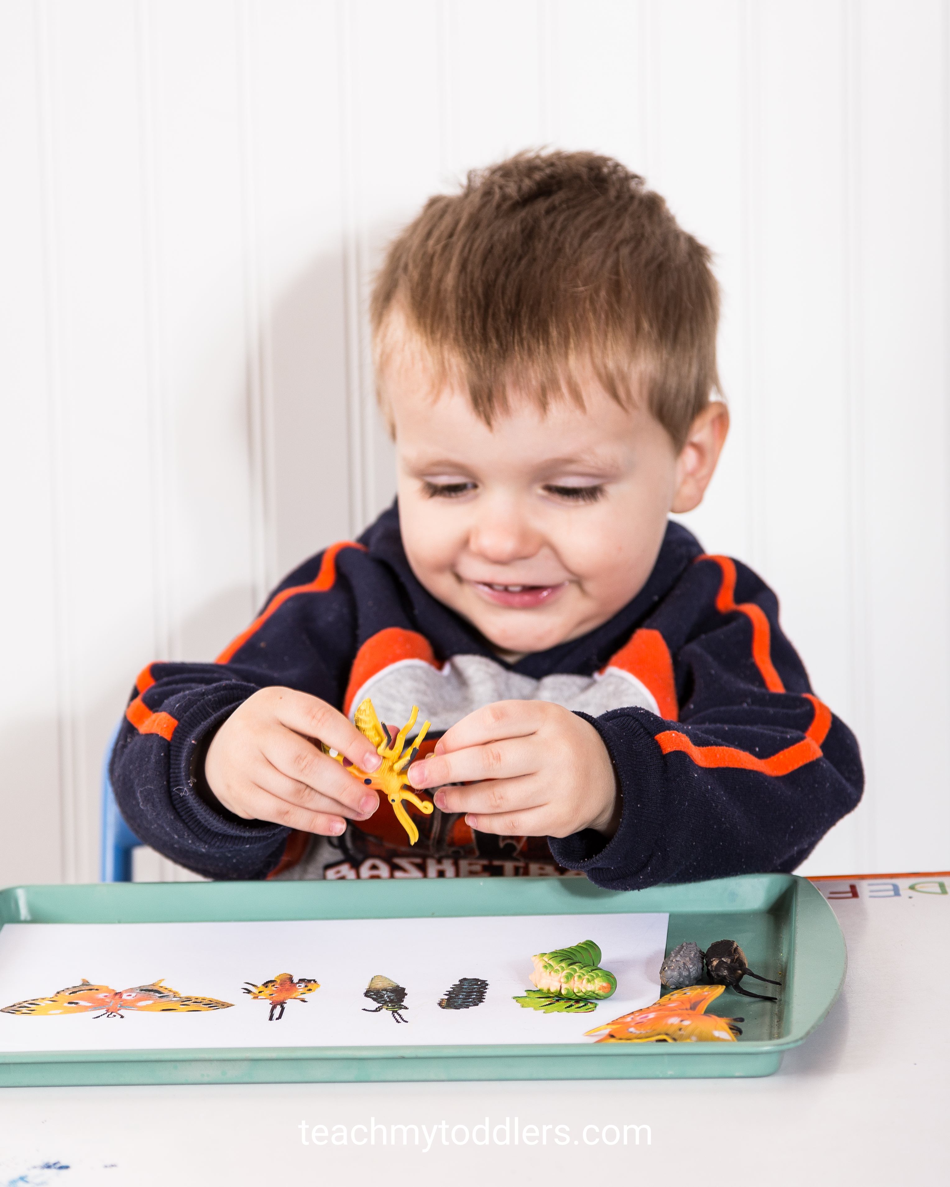 Teach toddlers the letter i using these exciting insect activities
